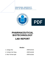 -Pharma-BT-Lab.docx