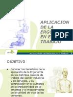 Aplicacion de La Ergonomia en El Trabajo_2010