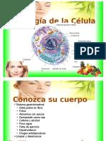 Fisiología de la Célula