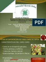 Exposición de Marketing Final Camu Camu