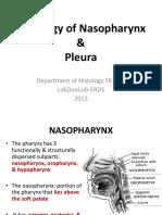 K.14 Histology of Nasopharynx & Pleura