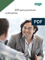 Um Guia ERP Para Promover a Eficiência