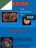 Hiv Aids 2010