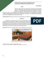 Eren Balevi - II. Mahmut Dönemi Osmanlı Deniz Üniformaları