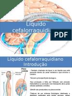 Líquido Cefalorraquidiano1 [Salvo Automaticamente]