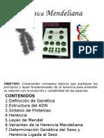 GENETICA MEDELIANA.pptx