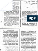 A Fenomenologia - Texto 1