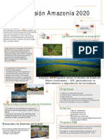 Infografía Visión Amazonía 2020