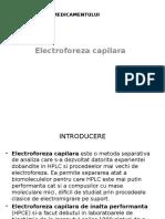 electroforeza capilara