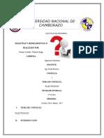 ocnsulta 2.docx
