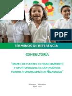 TDR-Consultoría