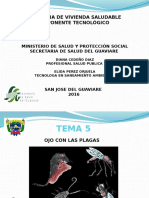 Presentacion Taller Ojo Con Las Plagas