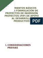 2013.01.11_Lineamientos de Pips Productivos