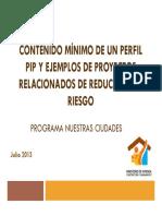 Contenido minimo de un pip ejemplos de recduccion de riesgos.pdf