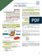 Clase 15 - Patología Arterial Periferica