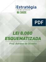 Lei 8080 Esquematizada1 (1)