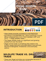 wildlife trade powerpoint