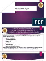 Algae.pdf