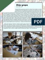2015 - strip_grupa_2015.pdf