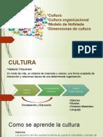 Cultura Organizacional Hofstede y Dimensiones.pptx