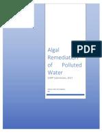 SJWP Paper - Christopher Gilmer-Hill