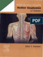 fichasautoevaluacionanatomia_tronco_nett.pdf