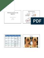 6 glandulas anexas ao sistema digestorio (3).pdf