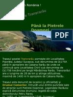 PE_TRANSRARAU.ppsx