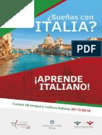 Brochure Iic 2017