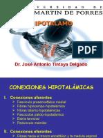 Copia de HIPOTALAMO Tintaya