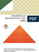 Desarrollo Neurológico Del Niño
