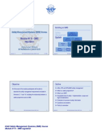 ICAO SMS Module N° 6 – SMS regulation 2008-11 (E)