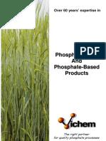 Phosphoric Acid and Phosphate-based Products