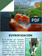 presentacionfinal-140509085454-phpapp02