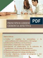 PRINCIPIOS GERENCIALES
