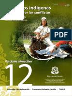 conflictos socioambientales indigenas