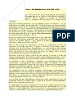 Informe Fósiles de Ballenas Al Sur Del Perú