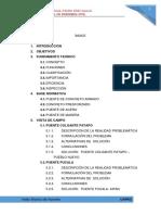 visita-tecnica-de-puentes.pdf