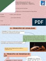 Principios de Procedimientos Tributarios