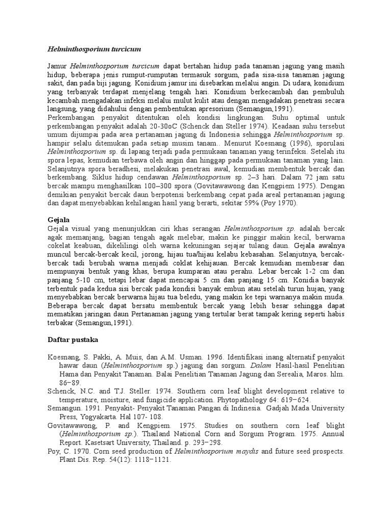 siklus hidup helminthosporium turcicum