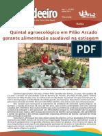 O Candeiro  -  Quintal Agroecologico