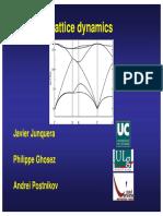 Lattice Dynamics