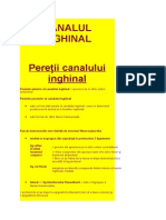 CANALUL INGHINAL.docx