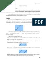 FG Teoria Vectores