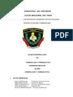 SÍLABO CRIMINOLOGÍA Y CRIMINALÍSTICA 2016-2.docx
