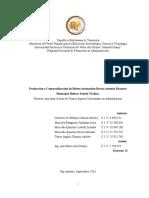 PROYECTO FINAL PRODUCCION Y COMERCIALIZACION DE BOLSOS ARTESANALES.doc
