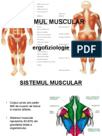 muscular ergofiziologie.ppt