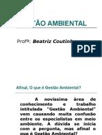 1 Gestao Ambiental (2)