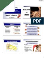 Músculos-do-Membro-Superior-Ombro-e-Braço1.pdf