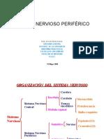 Sistema nervioso periferico blanco.ppt